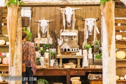 Vintage Market Days - Comfort-1510